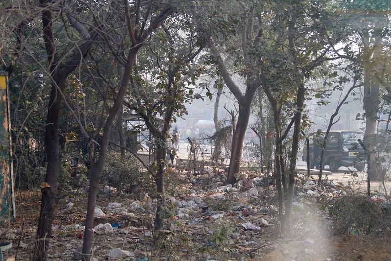 India_2012Feb-5177.jpg