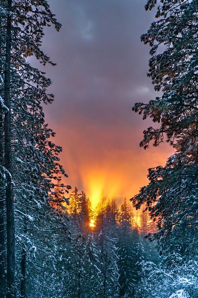 Sunset on Fire (vertical)