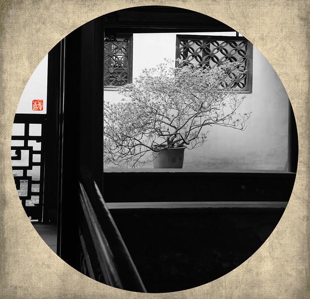 园林-5.jpg