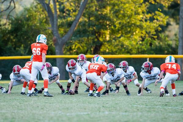 #21 Falcons vs Dolphins