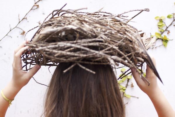 tengo un nido en mi cabeza