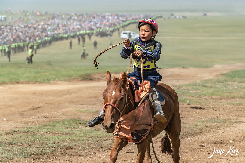 Horse racing__6109069-Juno Kim.jpg