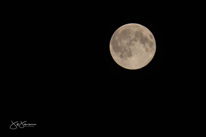 full_moon-0556.jpg