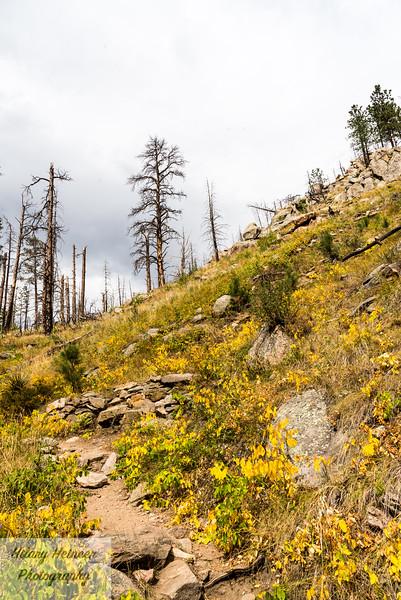 Colorado-611.jpg