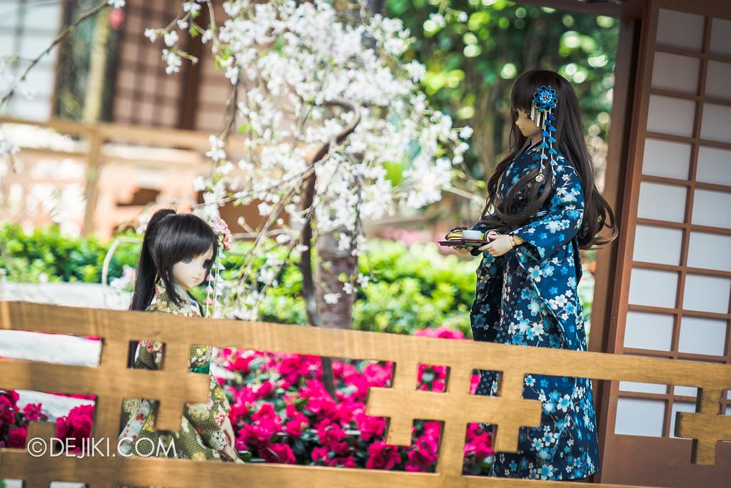 Gardens by the Bay - Sakura Matsuri 2018 floral display - flower field dolls tea house