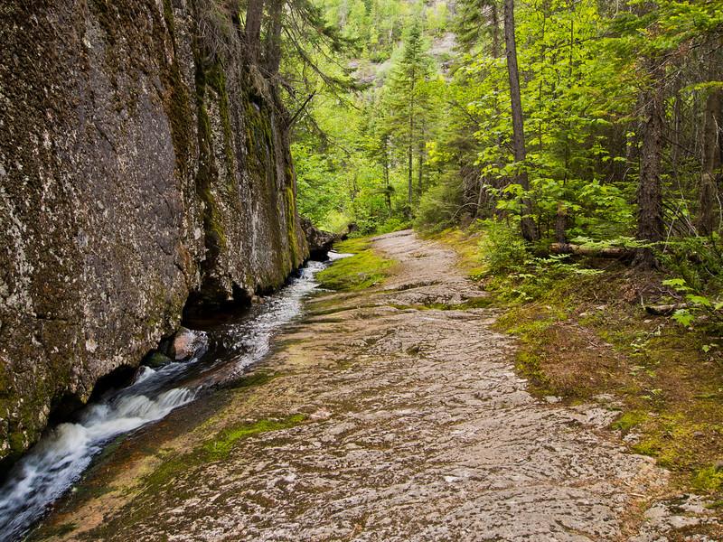 Ruisseau - Sentier de la Montagne Blanche