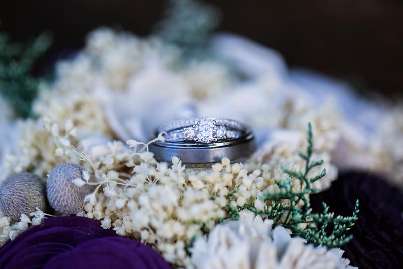 DICKERSON_WEDDING--9759.jpg