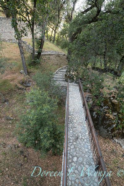 Umbellularia californica - Quercus agrifolia - Q lobata - stonework bridge_4467.jpg