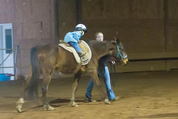 Horse Lession
