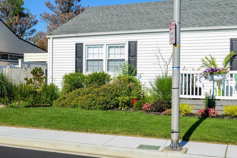 House and Garden-003.jpg