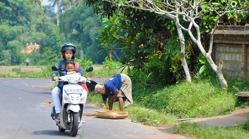 Bali-551.jpg