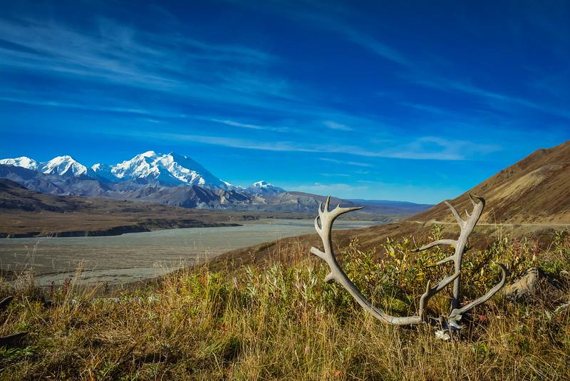 Denali-National-Park-105.jpg