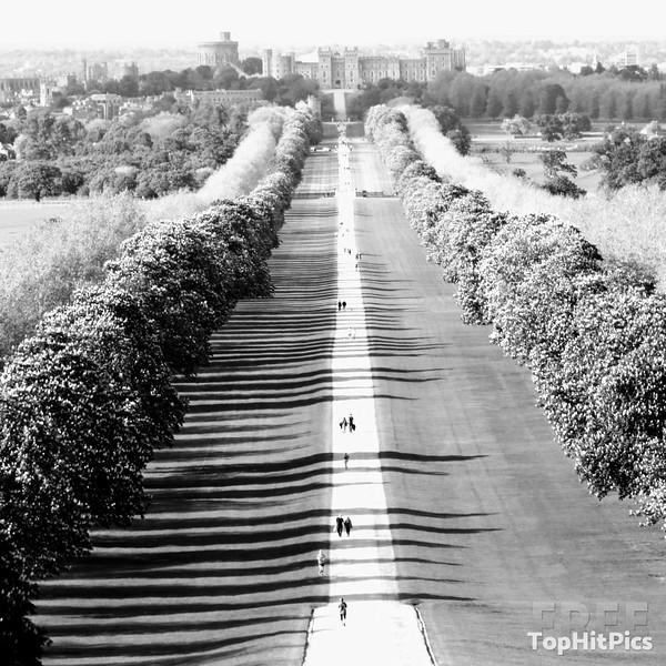 The Long Walk in Windsor Great Park, Windsor, Berkshire, England