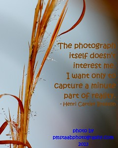 PM Staab Photography Sayings