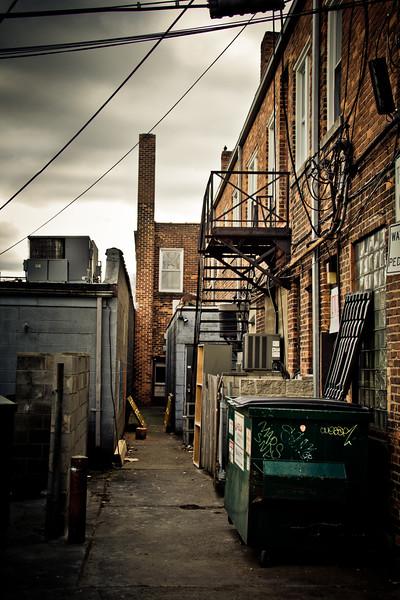 alley in royal oak-3.jpg