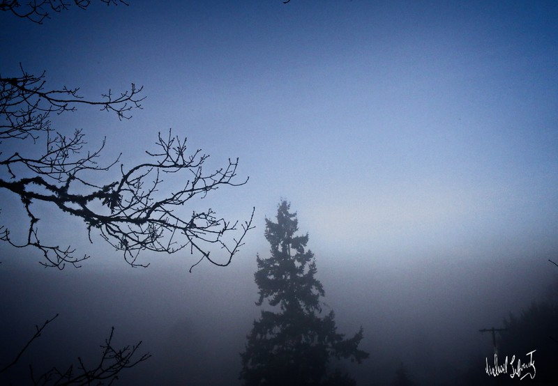 foggy sunrise #2 blue