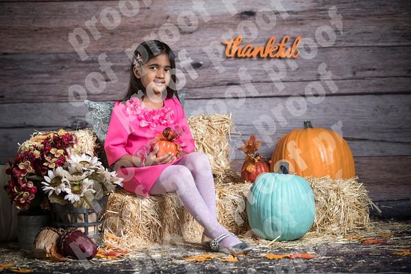 Anisha R