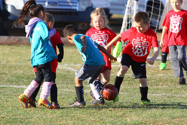 U5 & U6 - KINGFISHER SOCCER CLUB SPRING TOURNAMENT