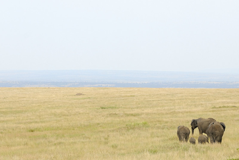 Kenya Aug 2007 060.JPG