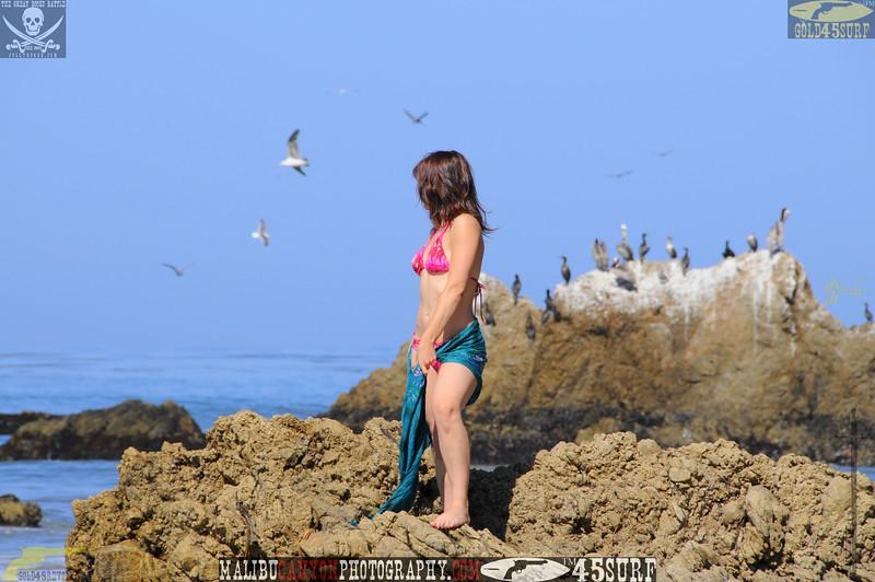 rock_climbing_malibu_swimsuit 1393.023434