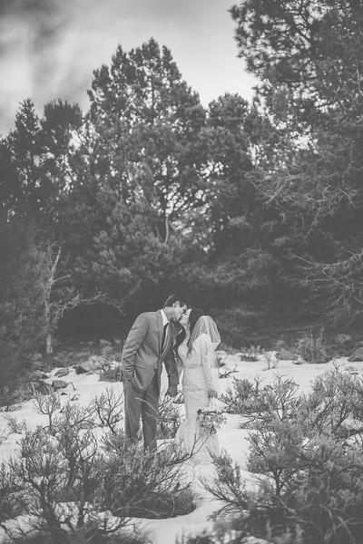 Bridals-566.jpg