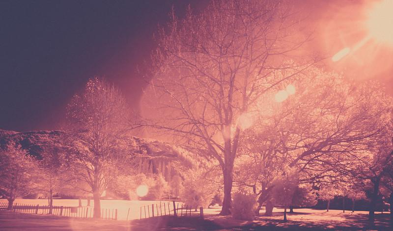 Silverstream Haze