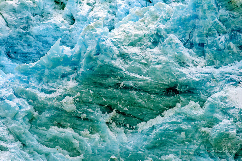 9-2-16176645 kenvikken, svalbard blue whale.jpg
