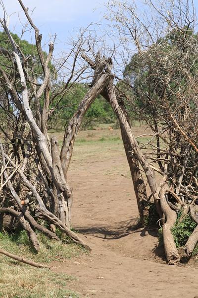 Kenya Part2 '15 1009.JPG
