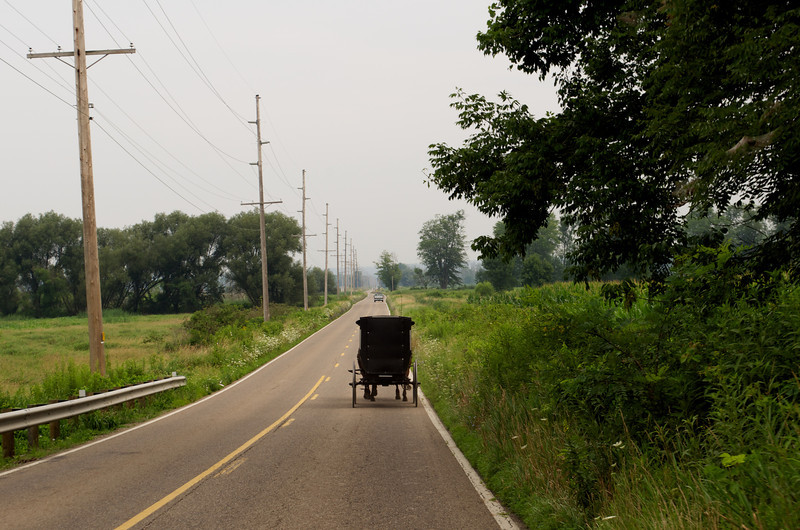 Amish Buggy in Wooster, OH