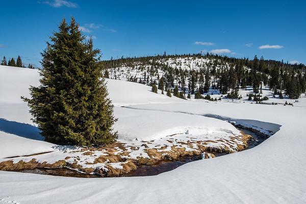 Šumava - Luzný - březen 2019
