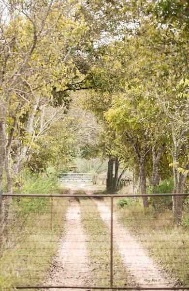 Ranch Road Schertz_DWL5155.jpg