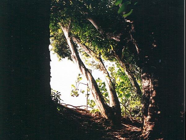 Hawaii-423.jpg