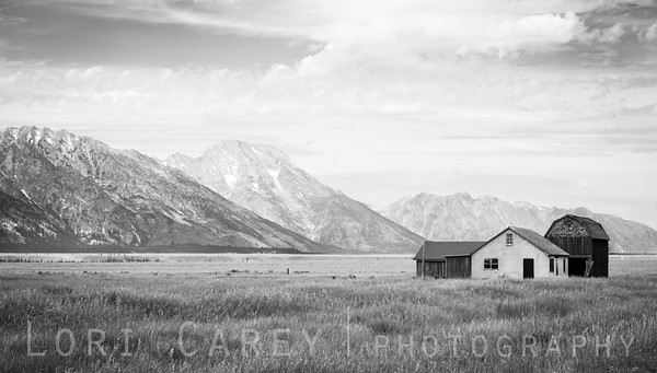 Reed Moulton Homestead in black and white, Mormon Row Historic District, Grand Teton National Park, Wyoming