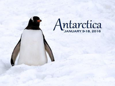 2016 - Antarctica