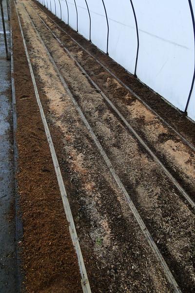 Plantmad Callus bed