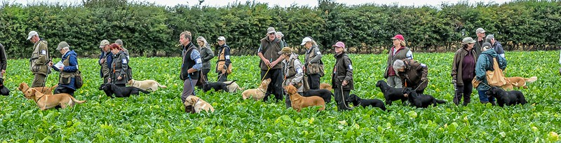 United Retriever Club Trials (Lincs) 2018