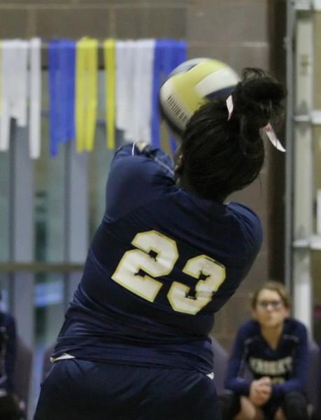 VCA-Volleyball-47.jpg
