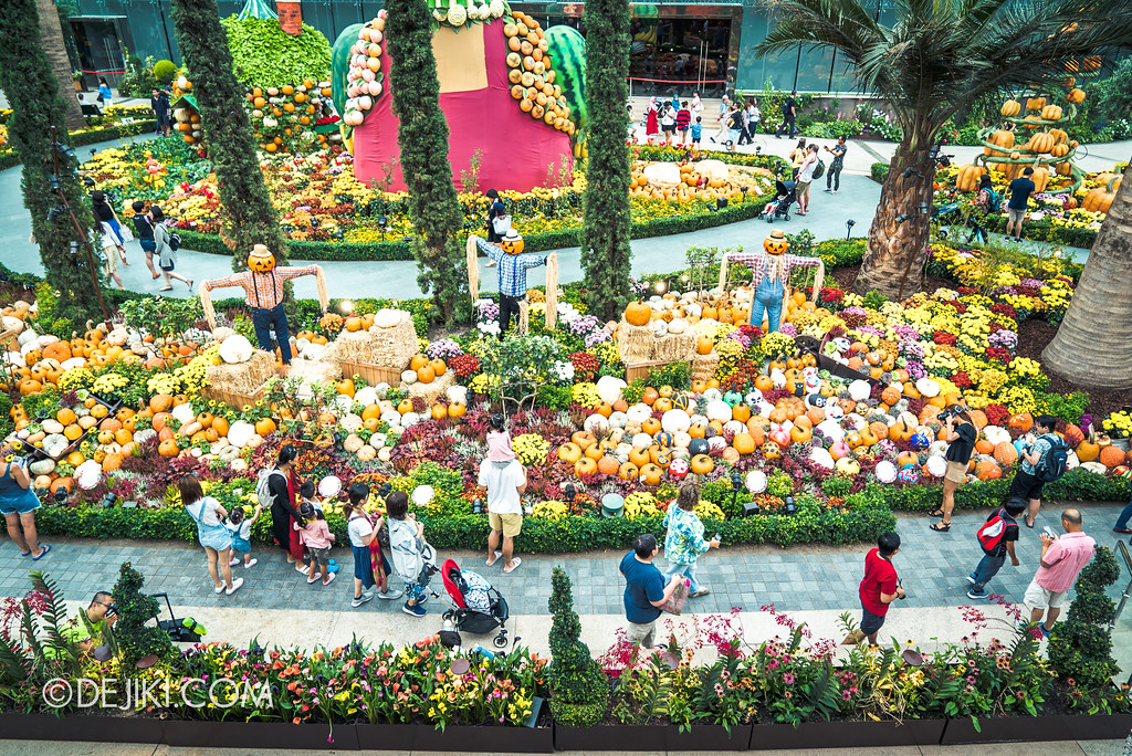 Gardens by the Bay - Autumn Harvest Floral Display - Pumpkin Fields overview