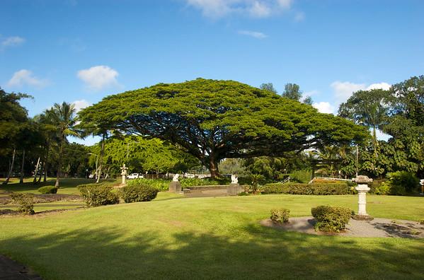 Queen Lilioukalani Gardens
