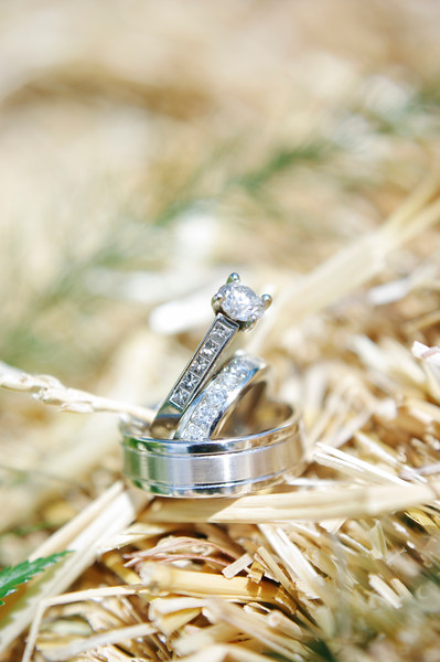 alberta wedding FAQs