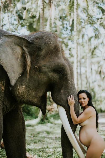 VTV_family_photoshoot_elephants_Bali_ (126).jpg
