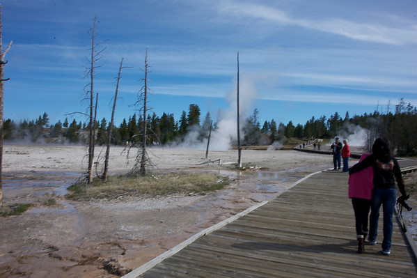 Day 6 All Yellowstone