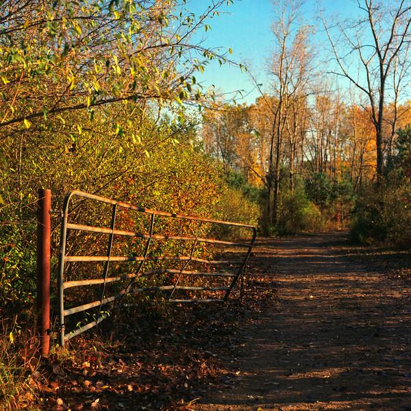 Autumn Hike 120 Film-00052.jpg
