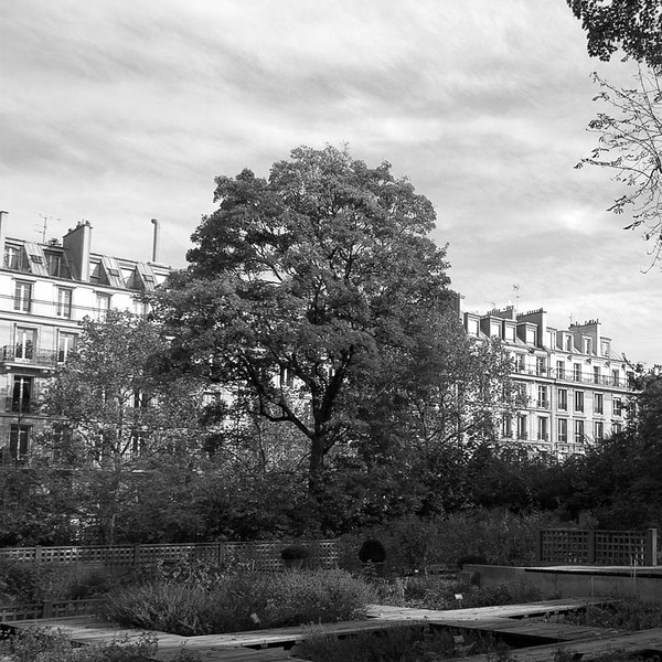 Garden, Musee Cluny, 5eme Latin Quarter, Paris
