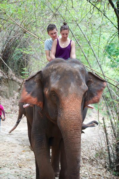 Roewe_Thailand 128.jpg