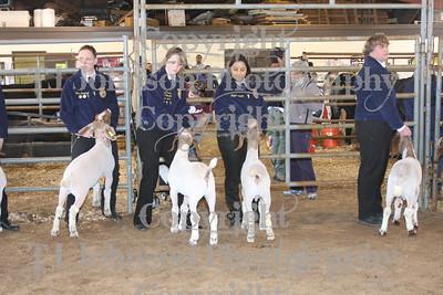 2009 Klein ISD Goat Show