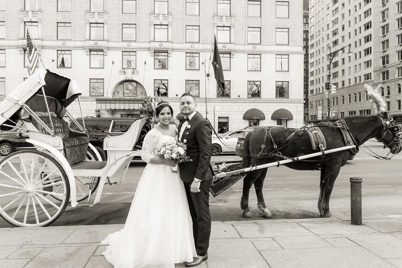 Central Park Wedding - Ariel e Idelina-220.jpg
