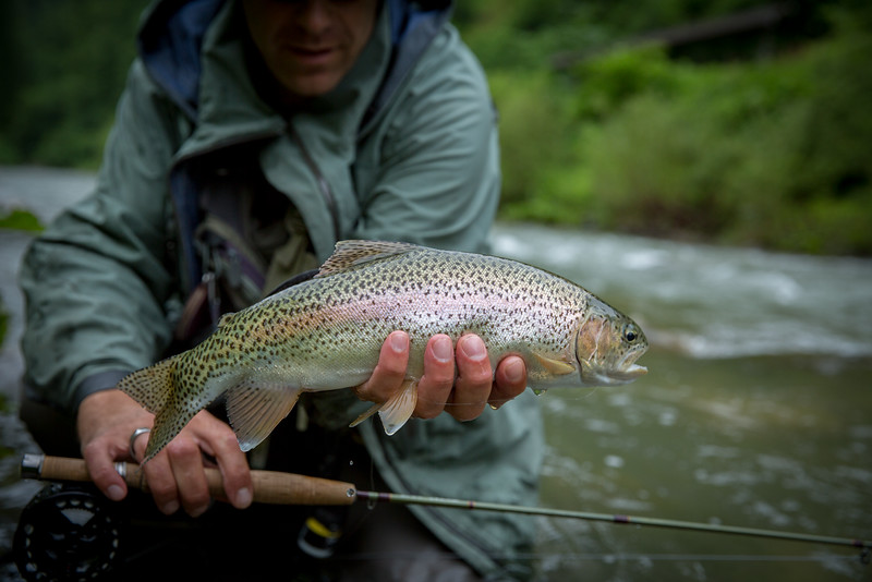 A beautiful wild Slovenien rainbow