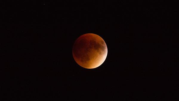 Harvest Blood Moon 2015