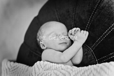 Baby Leo Viscome